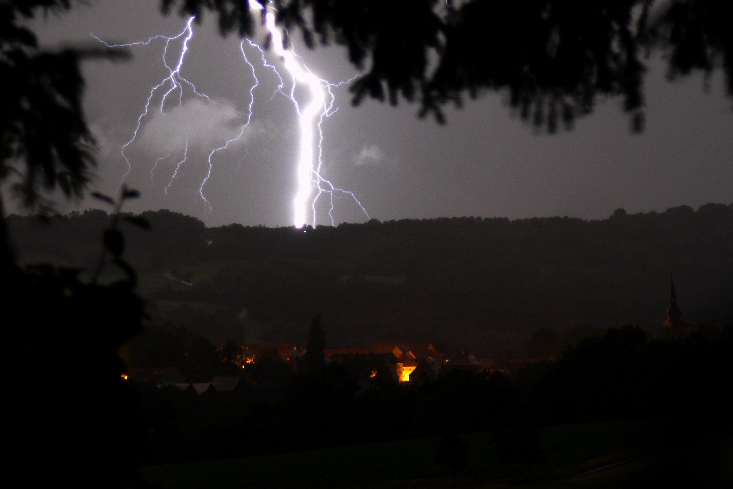 Blitzschäden an Bäumen