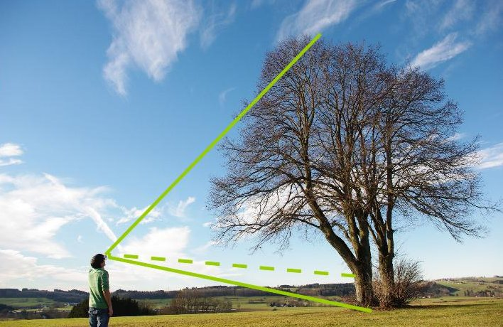 Smartphone als Baumhöhenmesser