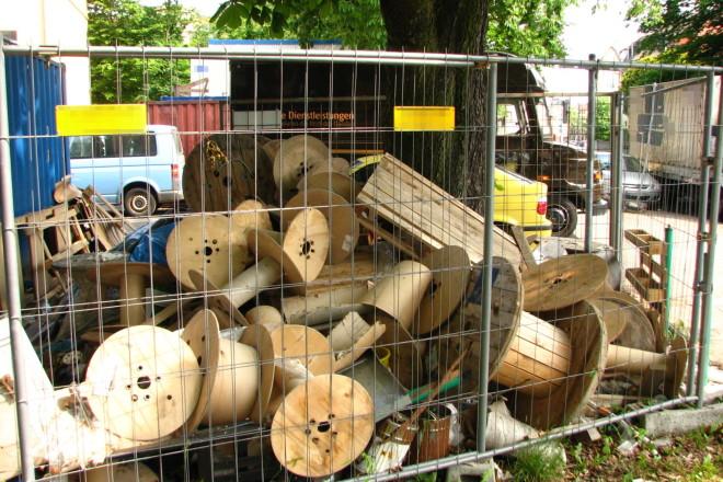 Kein Baumschutz
