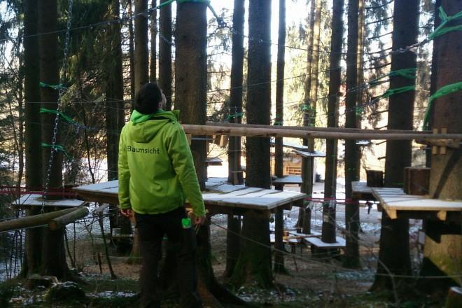 Baumkontrolle im Waldseilgarten