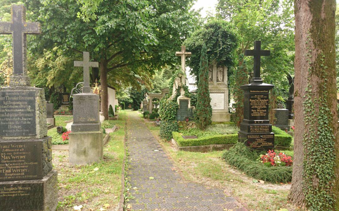 Baumkataster Friedhöfe Dachau