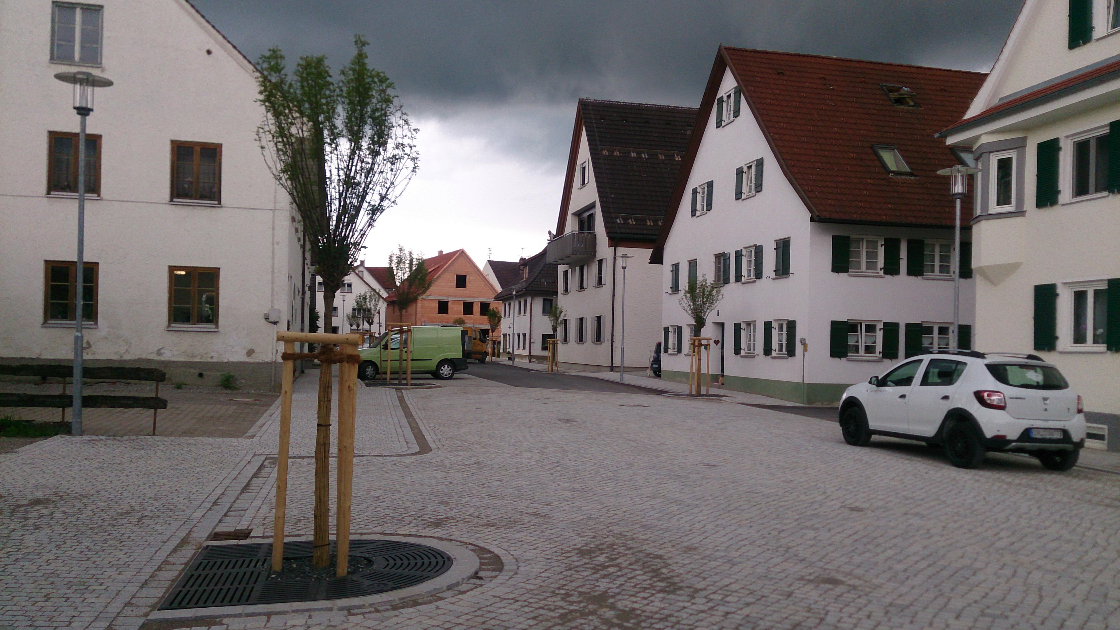 Nachpflanzungen von Kugelrobinien im Zuge einer Straßensanierung