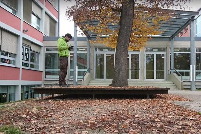 Baumkontrolle Schule Krailling