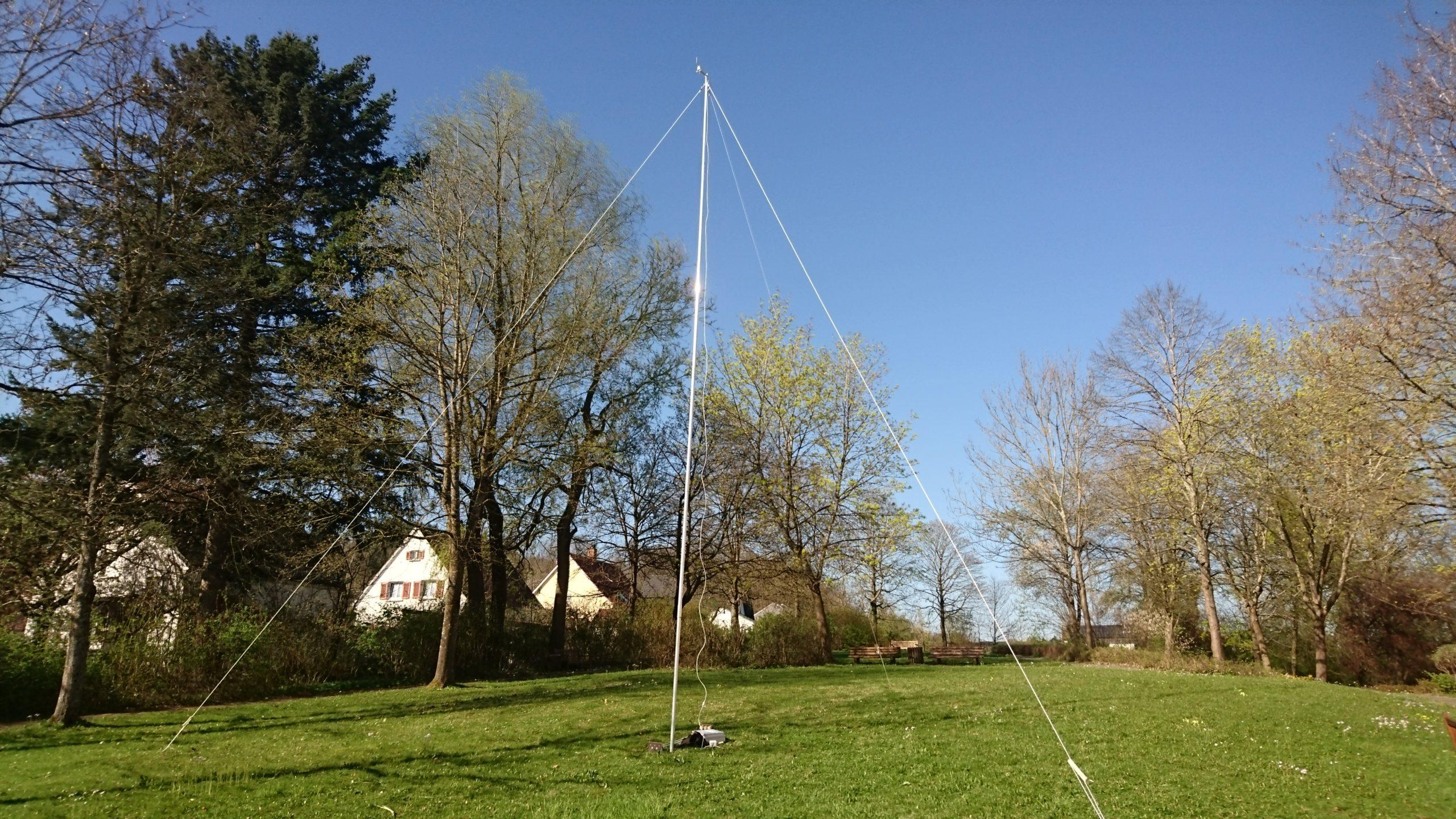 DynaRoot: Überprüfung der Standsicherheit mit Wind