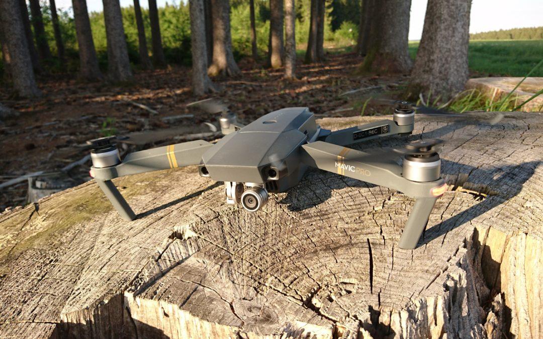 Baumkontrolle aus der Luft