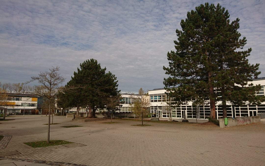 Baumkataster Landratsamt Augsburg