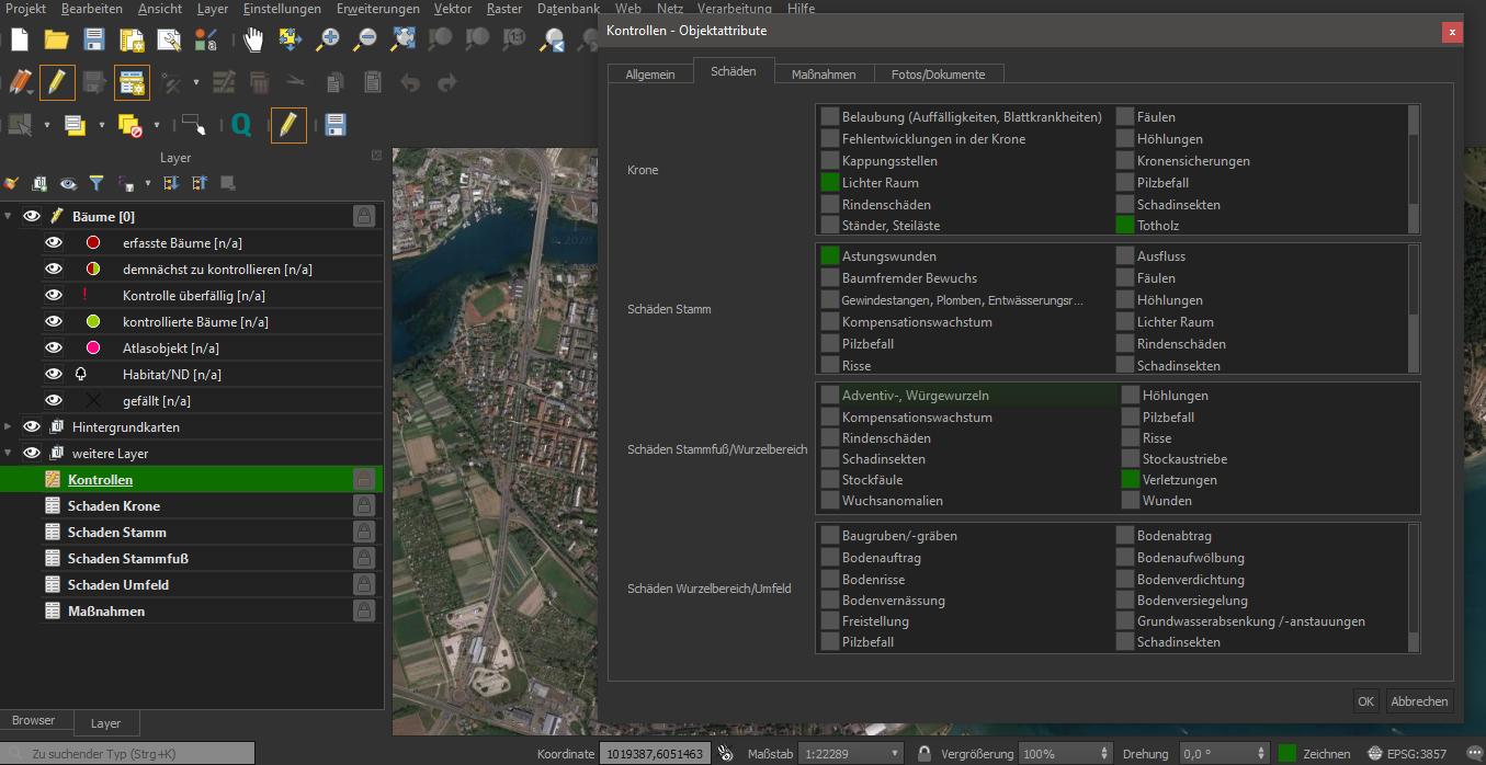 Screenshot Baumkataster 4 (in Entwicklung)